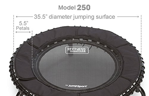 JumpSport Fitness Trampoline Model 250 with Detailed Information