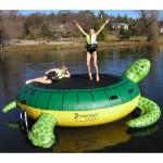 Island Hopper Turtle Hop Water Bouncer