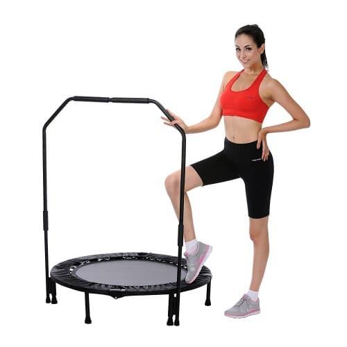 Sunny Health Fitness foldable 40