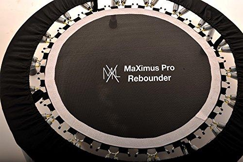 The Maximus Pro Rebounder