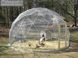 Geodesic Dome Animal Pen backyard games